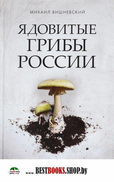 Наркотик приобрести Комсомольск-на-Амуре спайс в домодедово
